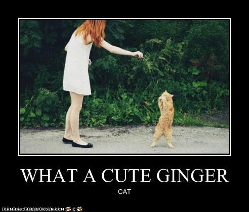 WHAT A CUTE GINGER