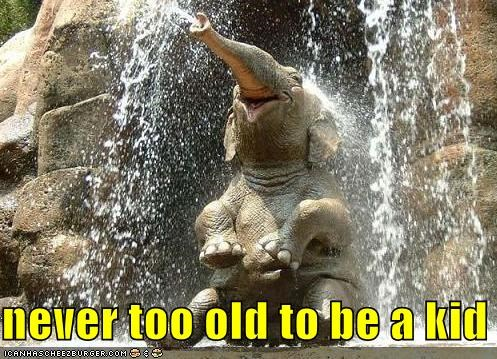 be caption captioned do want elephant fun kid never old too waterfall