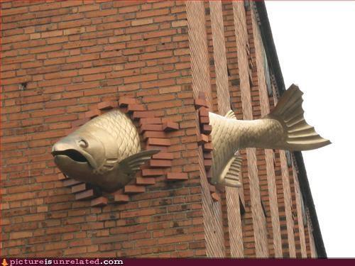 art fish sculpture swimming wtf - 4907359744