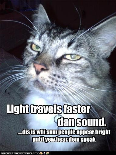 caption captioned cat comparison condescending explanation fact faster Hall of Fame light sarcasm sound travels