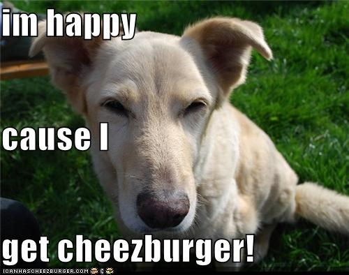 Cheezburger Image 4907766528