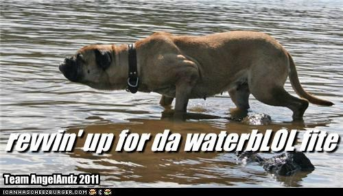 revvin' up for da waterbLOL fite Team AngelAndz 2011