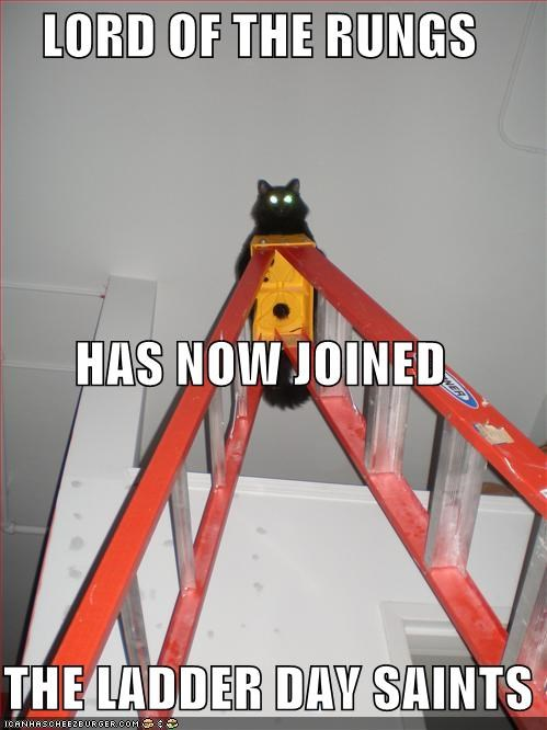 caption,captioned,cat,day,joined,ladder,latter-day saints,lord,Lord of the Rings,pun,puns,rungs,saints