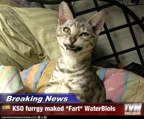 Breaking News - KSO furrgy maked *Fart* WaterBlols