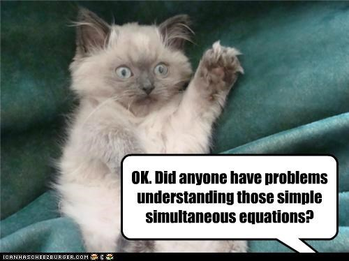 caption captioned cat class confused equations hand kitten question ragdoll raising simple simultaneous - 4910387200