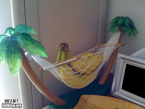 banana banana hammock clever food fruit puns So Much Pun - 4912162816
