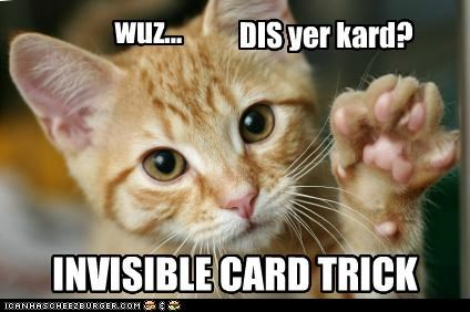 asking,caption,captioned,card,Card Trick,cat,holding,invisible,question,tabby,trick
