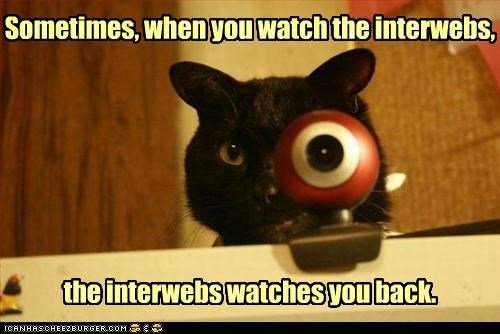Sometimes, when you watch the interwebs, the interwebs watches you back.