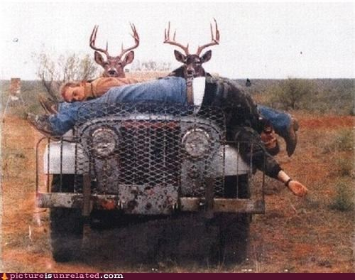 deer hunting jeep wtf - 4913178112