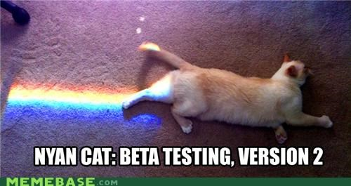 beta IRL Nyan Cat rainbow testing version 2 window - 4913267968