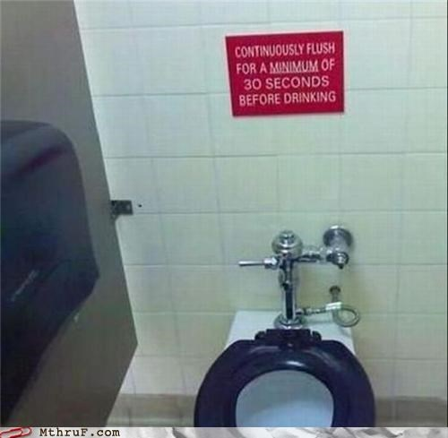bathroom drinking flushing toilet - 4914215168