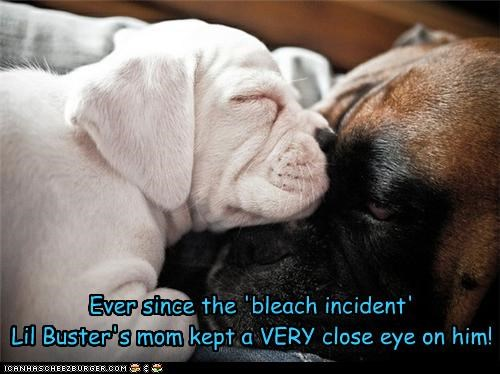 Ever since the 'bleach incident' Lil Buster's mom kept a VERY close eye on him!