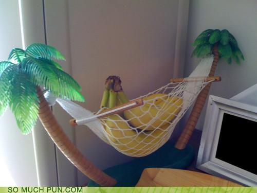 banana,banana hammock,double meaning,hammock,literalism