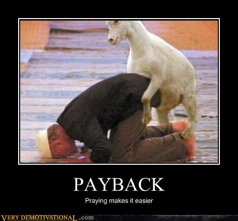 goat hilarious payback praying sexy times wtf