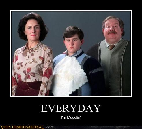 Harry Potter shuffling muggles everyday