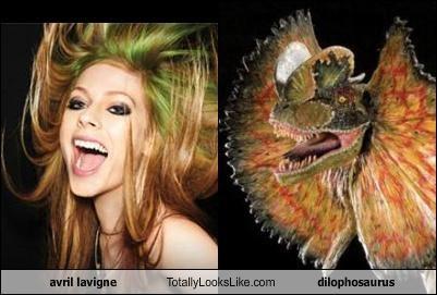 avril lavigne dilophosaurus dinosaur Hall of Fame musicians - 4917193984