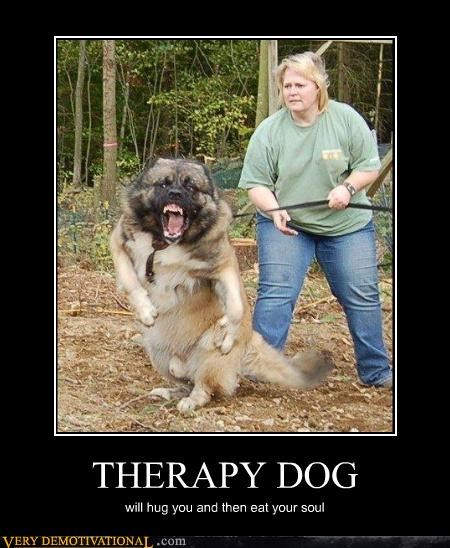 animals dogs scary Terrifying therapy dog wtf - 4917323008