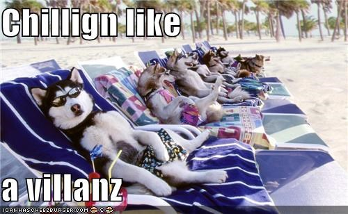 beach,clothing,huskies,outdoors,relaxing,sunglasses,sunny