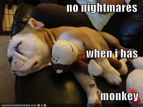 bulldog couch friends nap time nightmares sleeping - 4917450752