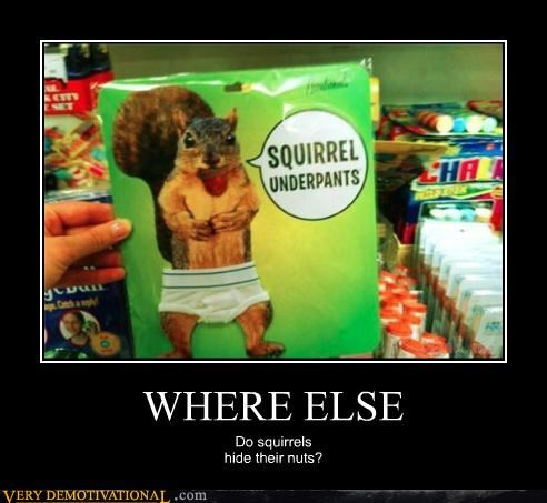 hilarious product squirrel underpants wtf - 4917561088