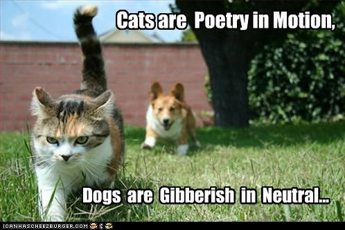 Cats are Poetry in Motion, Dogs are Gibberish in Neutral...