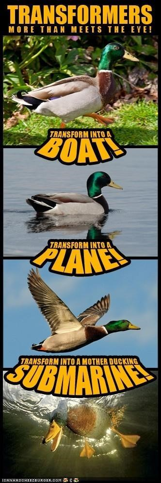 awesome birds boat ducks multipanel plane robots submarine transform transformers - 4918324736