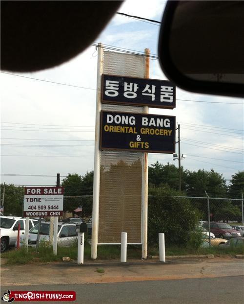 dong bang,penis,sex