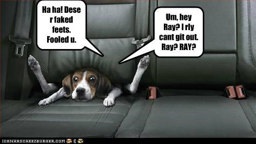 Ha ha! Dese r faked feets. Fooled u. Um, hey Ray? I rly cant git out. Ray? RAY?