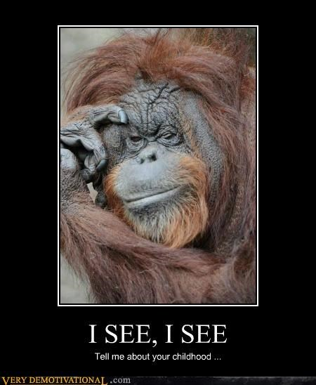 animals,ape,hilarious,i see,orangutan