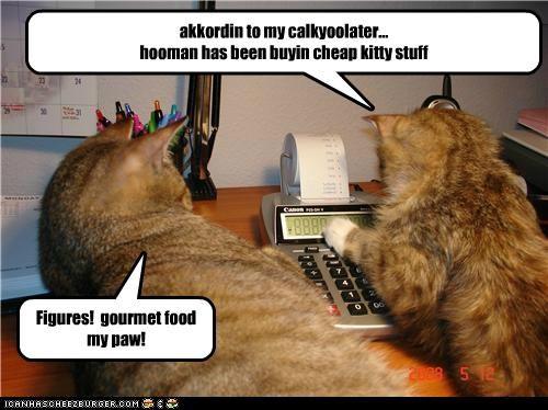 akkordin to my calkyoolater... hooman has been buyin cheap kitty stuff Figures! gourmet food my paw!