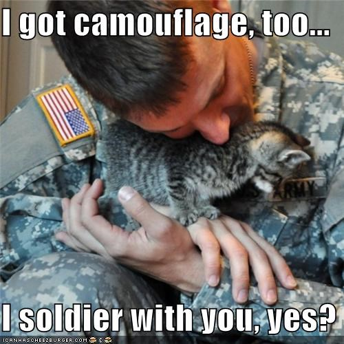 best of the week,camouflage,caption,captioned,cat,got,Hall of Fame,kitten,please,question,soldier,yes,you