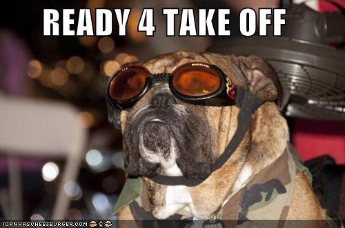 bulldog flight goggles - 4920494848