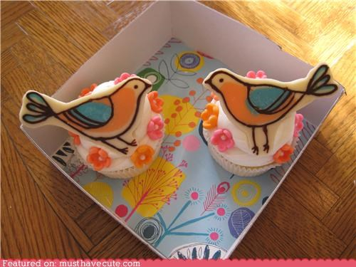 birds,colorful,cupcakes,epicute,flowers,white chocolate