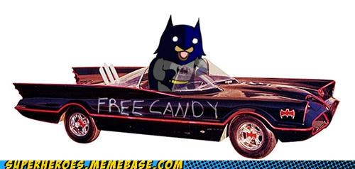 awesome batman batmobile pedo bear Random Heroics - 4921004544