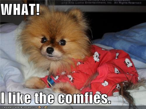 bed,clothing,comfy,pajamas,pomeranian