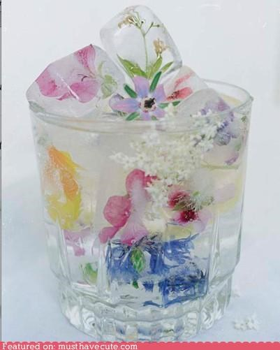 decorative,drink,epicute,flowers,frozen,ice cubes