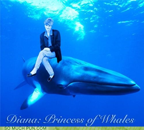 britain free willy homophone literalism princess diana royal family Wales whales - 4922080000