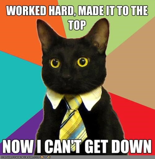 Business Cat,climb,ladder,memecats,Memes,stuck
