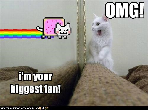 best of the week,biggest,caption,captioned,cat,do want,excited,fan,Nyan Cat,omg,shocked