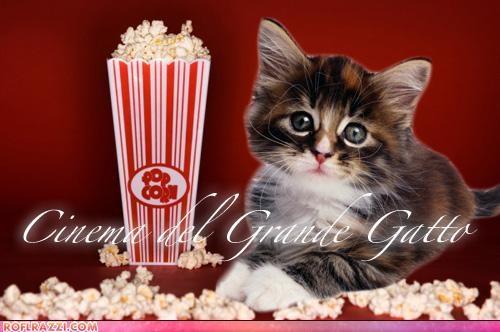 cinema movies reviews Selena Gomez shia labeouf tom hanks transformers - 4925460224
