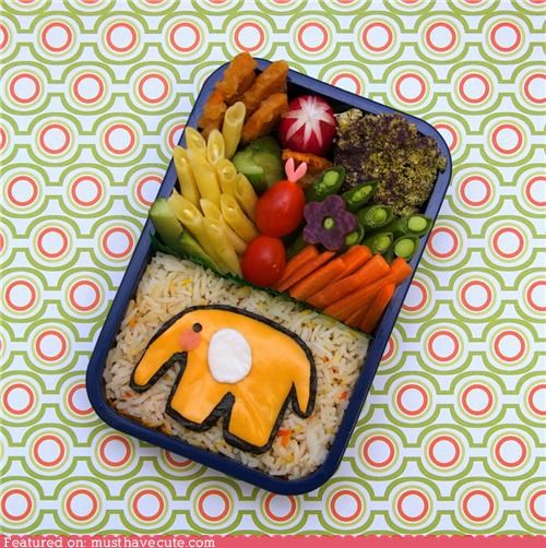 bento,cheese,elephant,epicute,lunch,meal,rice,veggies