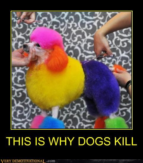 colors creepy dogs poodle Terrifying - 4926002944