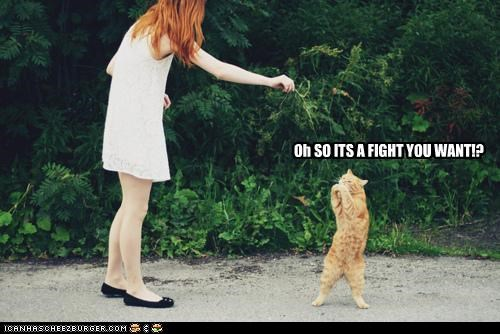 Oh SO ITS A FIGHT YOU WANT!?