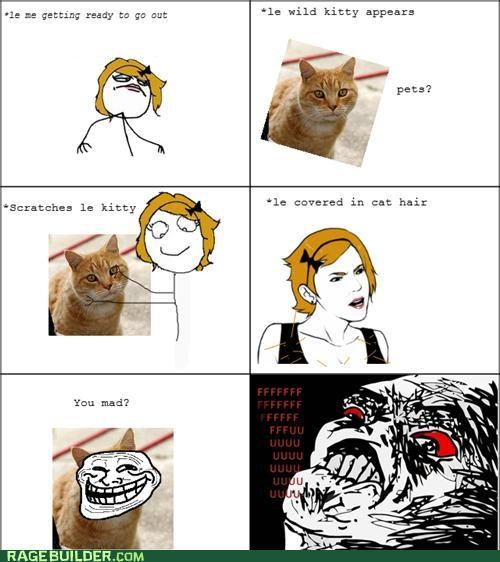 cat,hair,Rage Comics,raisin face,troll