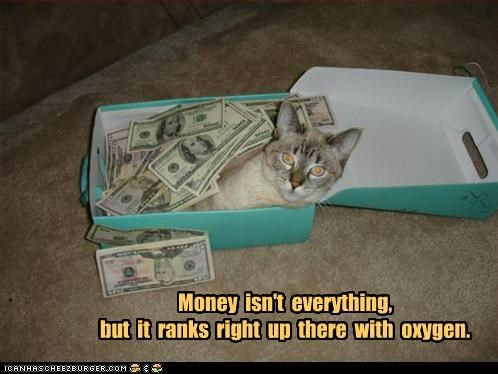 but caption captioned cat caveat everything is not just saying money oxygen rank second best wisdom - 4926831872