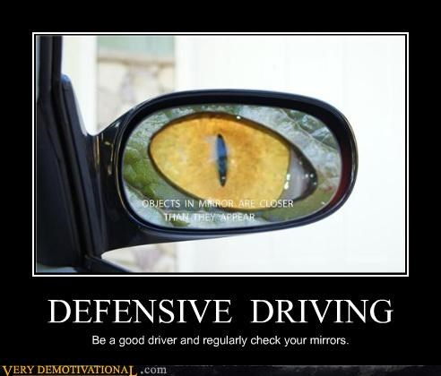 driving eyes lizard mirrors Terrifying - 4927623424