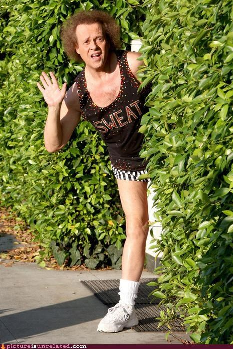 hello,richard simmons,workout,wtf
