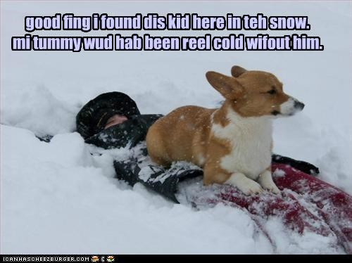 good fing i found dis kid here in teh snow. mi tummy wud hab been reel cold wifout him.