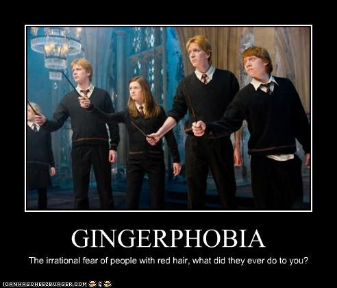 GINGERPHOBIA The irrational fear of people with red hair, what did they ever do to you?