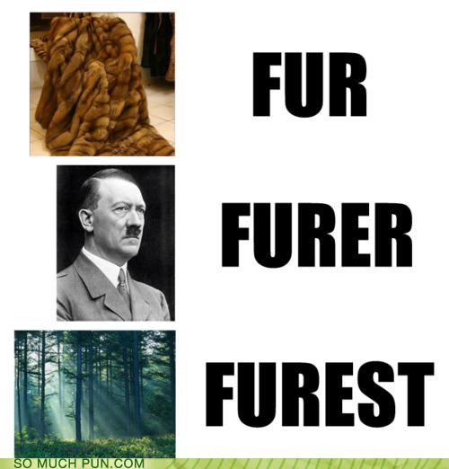 adjective Forest fuhrer fur Hall of Fame lolwut noun progression similar sounding transition - 4928939008